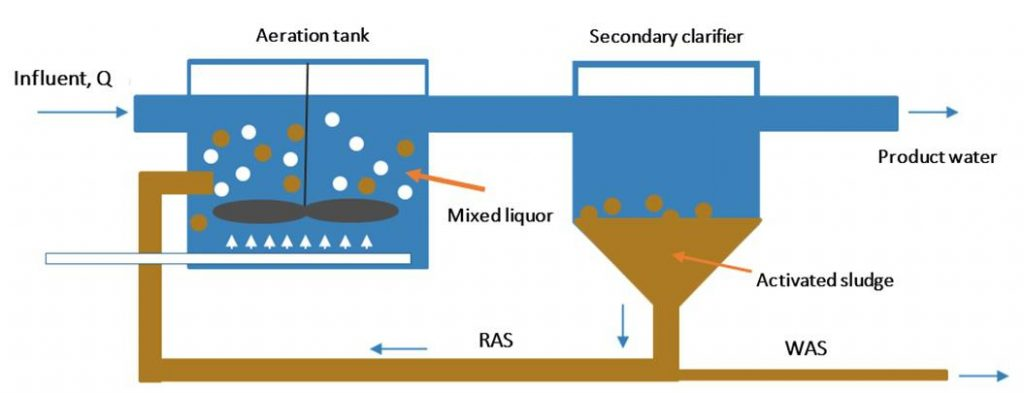 7 Disadvantages of Using an Activated Sludge Process For